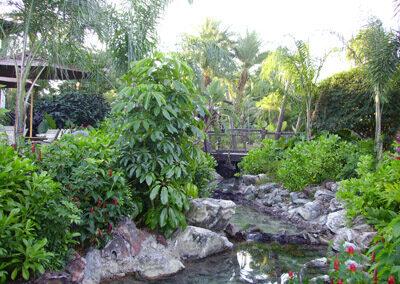 Rio del Disney Wilderness Lodge Resort